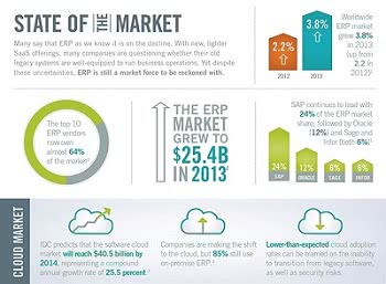 ERP Data Visualization Software Infographic